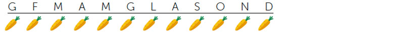 stagioni-carota